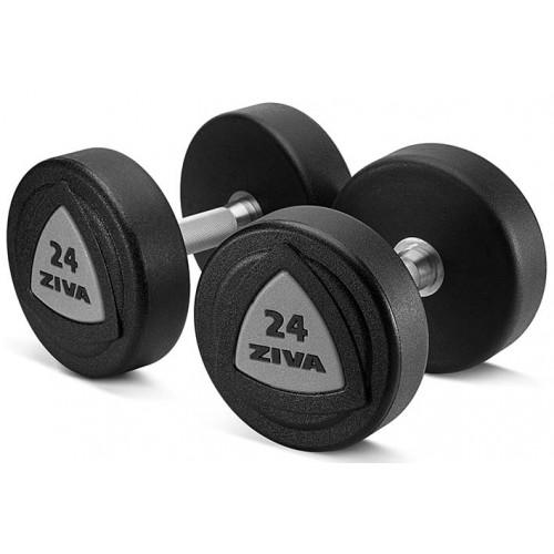 Ziva Dumbbells 24kg